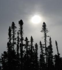 22-wintersun